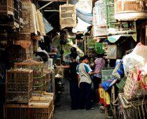 Tempat membeli oleh – oleh di Borobudur