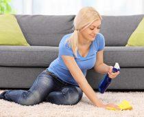 cara membersihkan karpet dari rambut