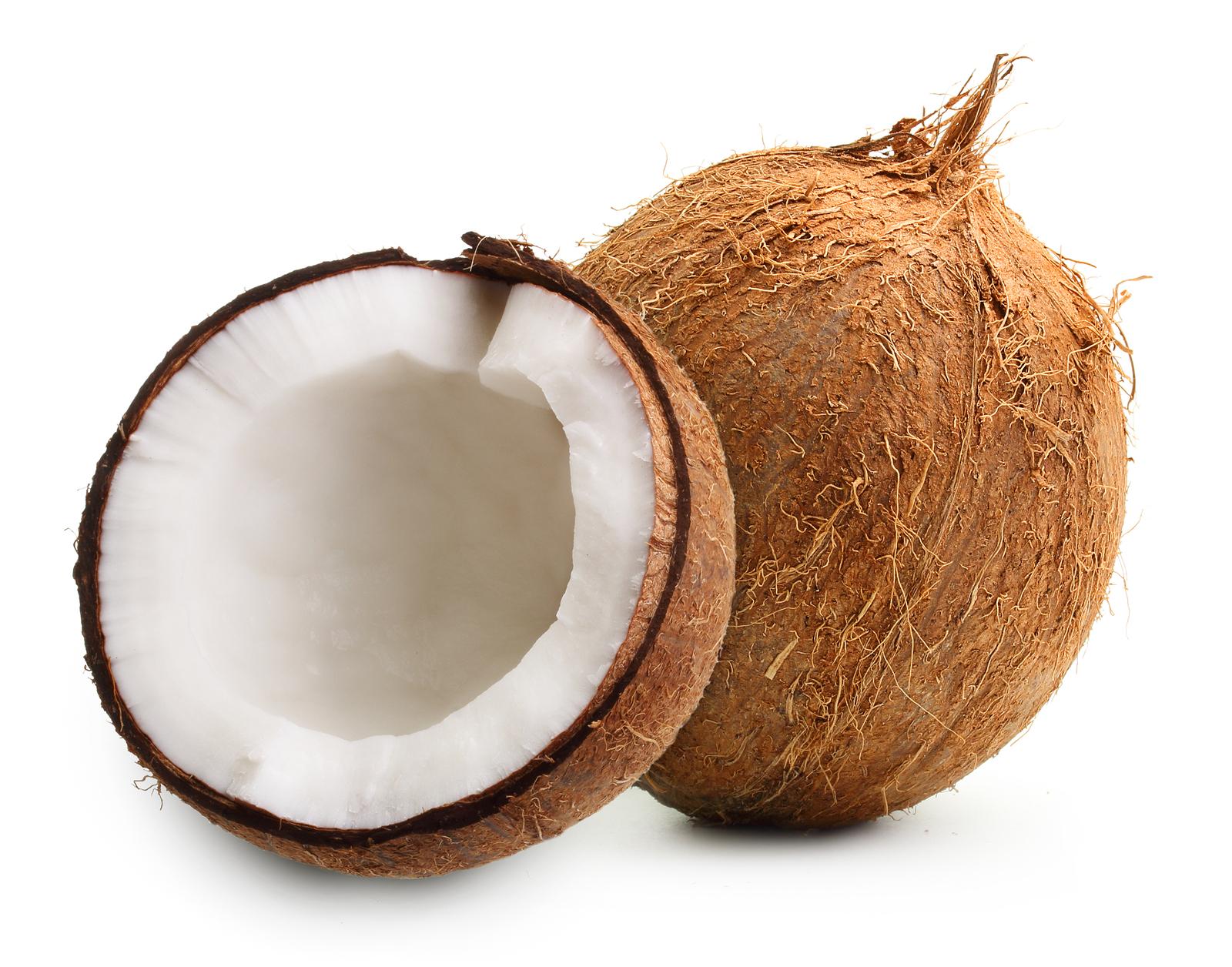 sitem kelapa, manfaat, ciri, proses dan produk