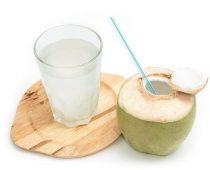 manfaat dari air kelapa muda bagi kesehatan adalah