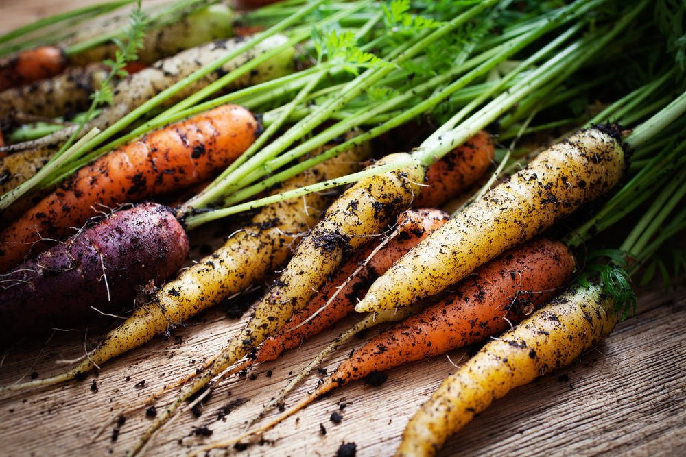 Benarkah Makanan Organik Lebih Sehat dari Makanan Biasa?